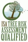 ISA+risk+logo
